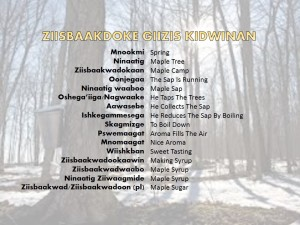 March Anishnaabemowin Words 2015
