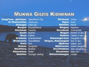 Mukwa Giizis kidwinan